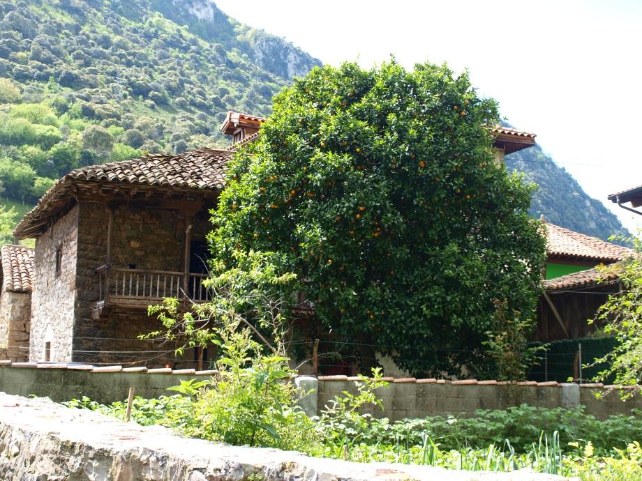 Villanueva de Santo Adriano