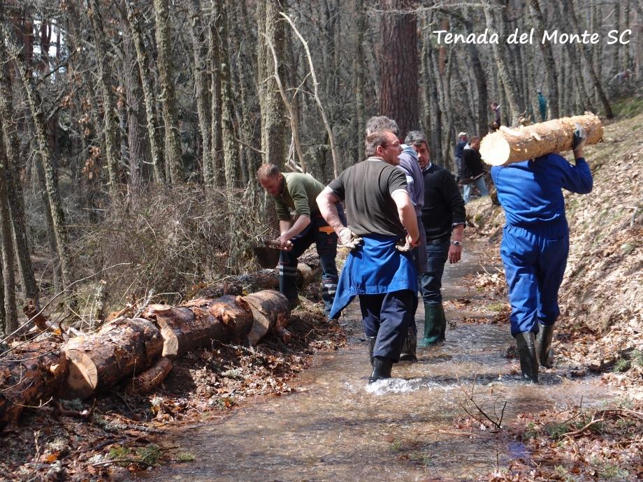Reforzando la cacera con troncos