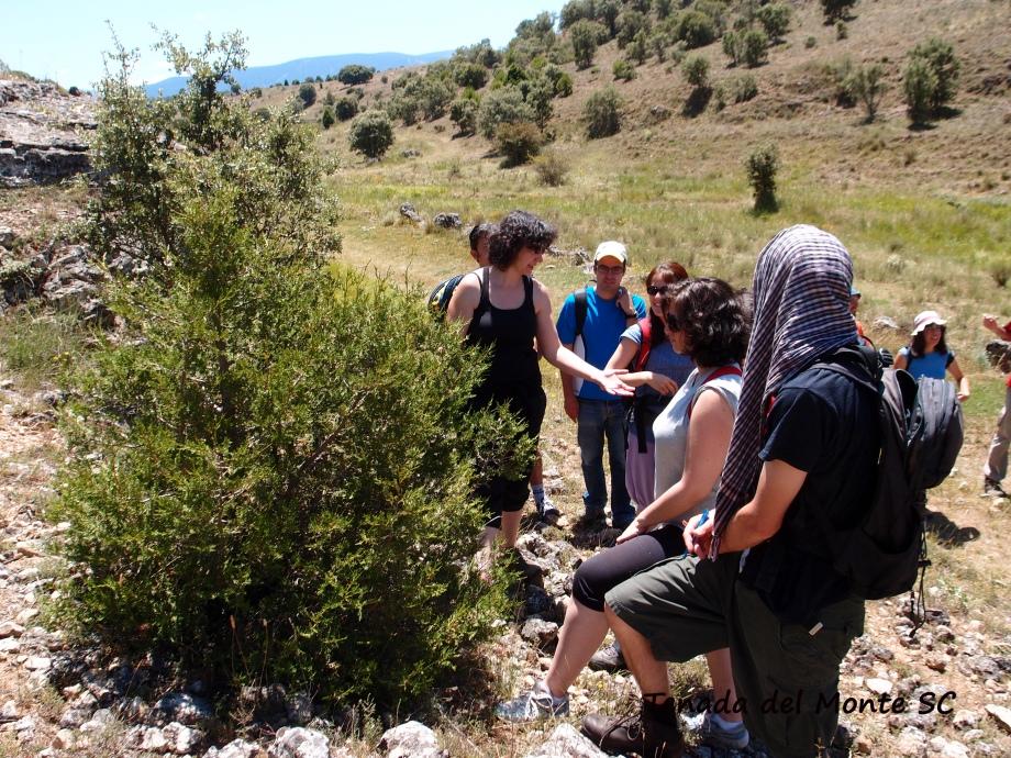 ruta etnobotánica en Caballar